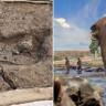 Bu Zamana Kadarki En Eski Ayak İzi Şili'de Bulundu