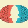 Beynimiz, Vücudumuzun Fizyolojik Yapısı İçin Ne Kadar Etkili?