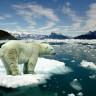 Kutupları Donduruyoruz: Bilim İnsanları, İklim Değişikliğine Karşı Yeni Yöntemler Deniyor