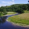 Nehirlerde, Güvenli Seviyenin 300 Katı Kadar Antibiyotik Bulundu