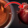 İnsanlar İçin 'Yapay Kalp Pompası' Üretildi