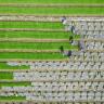 2050 Yılında 10 Milyara Ulaşacak İnsan Neslini Beslemek İçin 5 Adım