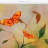 Adobe'un iPad Çizim Uygulamasının Adı Adobe Fresco Olacak