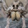 Yeni Bir Araştırmaya Göre Erkek Örümcekler, Aşk İçin Hayatlarını Tehlikeye Atıyor