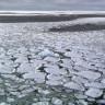 Güney Kutbundaki Buzullar, Korkunç Bir Hızla Erimeye Başladı