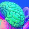 Her İnsan Beyninde Bulunan Gerçek Süper Güç: Nöroplastisite