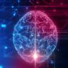 Bilim İnsanları, Akıllı Telefonla Kontrol Edilebilen Beyin İmplantı Geliştirdi