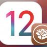iOS 12.4 İçin Jailbreak Yayınlandı: İşte Kurulum Rehberi