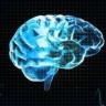 Beyin Kanaması, Ana Dilimizi Nasıl Etkiliyor? İşte Bilimin Cevabı