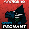 Webtekno'nun Ana Sponsoru Olduğu Regnant Esports, ESL Türkiye Şampiyonası'nda Finale Kaldı