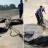 """Çinli Araştırmacıların Gözlemlediği """"Loch Ness"""" Canavarı, Kocaman Bir Lastik Çıktı"""