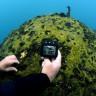 Van Gölü'nde Dünyanın En Büyük Mikrobiyalitleri Görüntülendi