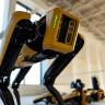 Boston Dynamics'in 'Spot' İsimli Robotu, Piyasaya Sürülmeye Hazırlanıyor