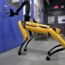 Robot Köpekler Algoritmalar Sayesinde Daha Gerçekçi Hareket Edebiliyor