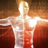 İnsan Vücudunun Kendi Kendini Yenileyebildiği Keşfedildi