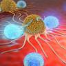 Kanserli Hücreleri 'GPS Gibi' Tespit Edebilen Yeni Bir Sistem Geliştirildi