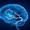 Beyniniz, Bazı Zor İşlere Aslında Şaşırtıcı Derecede Basit Yaklaşıyor