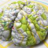 İnsan Beyninde Anıları Haritalayan Spesifik Nöronlar Keşfedildi
