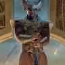 Thor Filminde Rol Alan Ünlü Bir Oyuncu, Bir Yaban Arısı Türüyle Adaş Oldu