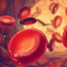 Bir Damla Kan ile 13 Kanser Türünü Tespit Edebilen Bir Test Geliştirildi