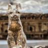 Antik Mısır'dan Kalma Bir Mezarda Hayvan Mumyaları Keşfedildi