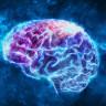 Bilim İnsanları, 'Bilgiyi Kafaya Yükleyecek' Yeni Bir Yöntem Buldular