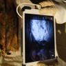 Kızıl Ötesi Taramalar ile 3000 Yıllık Mumyalarda Dövme Keşfedildi