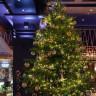 90 Milyon TL Değerindeki, Dünyanın En Pahalı Yılbaşı Ağacı
