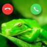 Kurbağaları Yakından İncelemek İçin Üretilen İlginç Cihaz: FrogPhone