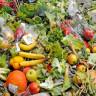 Araştırmacılar, Tarımsal Atıklardan Otomobil Parçası Geliştirdi