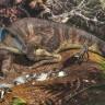 Avustralya'da Bebek Dinozorlara Ait Kemikler Bulundu