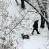 Rusya İklim Değişikliğine Uyum Planını Açıkladı