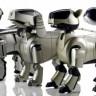 Dünyada Büyük Yankı Uyandıran Robot Köpek Aibo'nun Nesli Tükeniyor