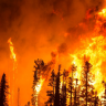 Avustralya'daki Yangınlar, CO2 Seviyesinde Artışa Sebep Olacak