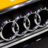 Audi Türkiye'den, İzmir'in Dağlarını Tekrar Yeşillendirecek Proje