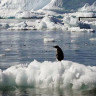 Antarktika'da Hava Sıcaklığı İlk Kez 20 Derecenin Üzerine Çıktı